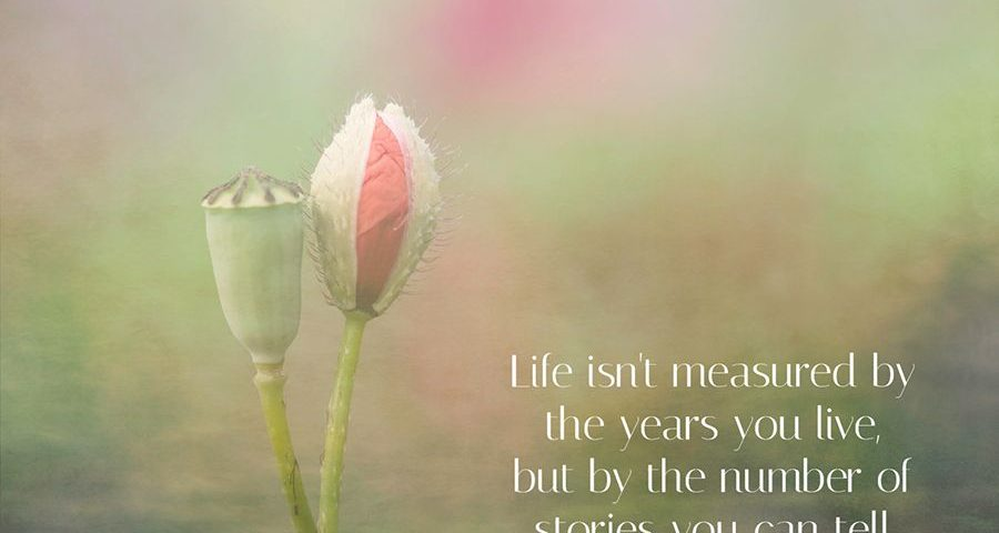 life-qoute-flower-tekst