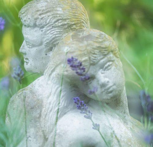 amour-lavendel-beelden