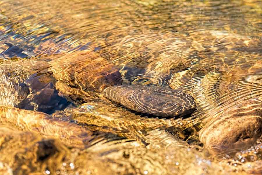 stromend-water-beweging