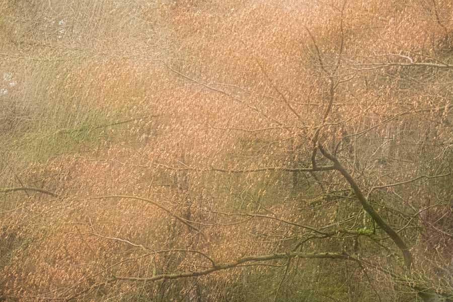 meervoudige-belichting-blaadjes-waterval